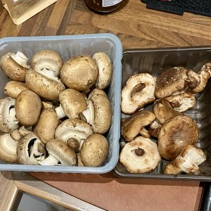 2 boxes of mushrooms on a counter.